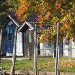 Au port de Biganos, cabanes et feuillages d'automne